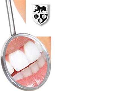 Logo Zahnarzt Slowenien